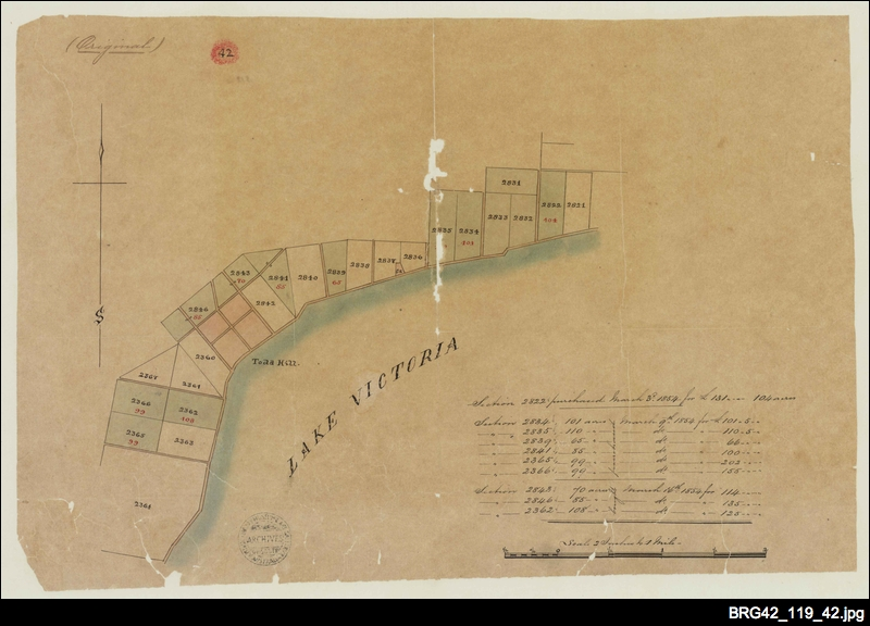 [Map of sections purchased in the Hundred of Bremer]