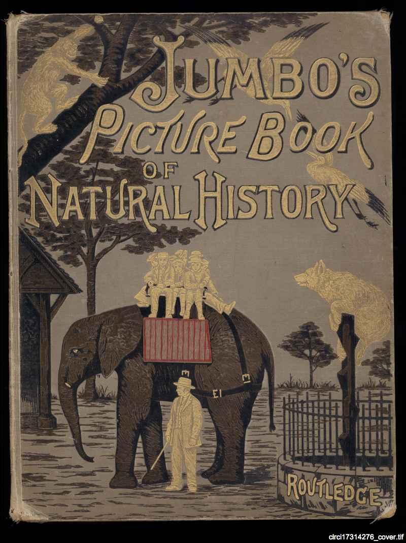 natural history illustrations