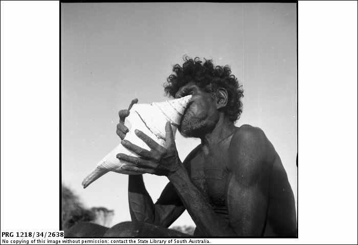 05. Aboriginal man blowing a conch shell