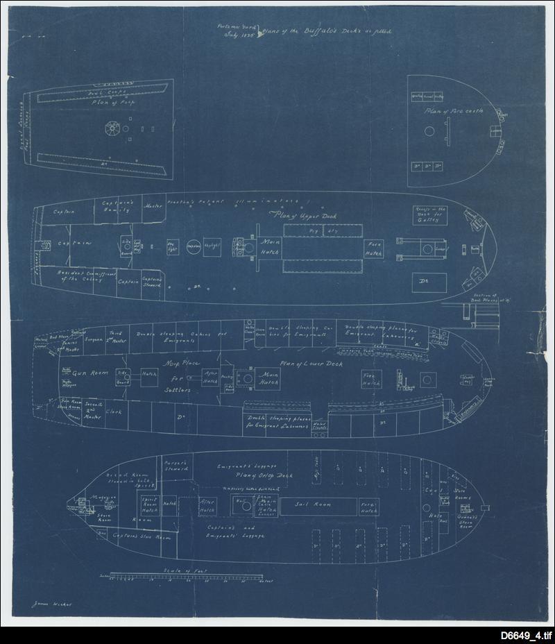 HMS Buffalo plan