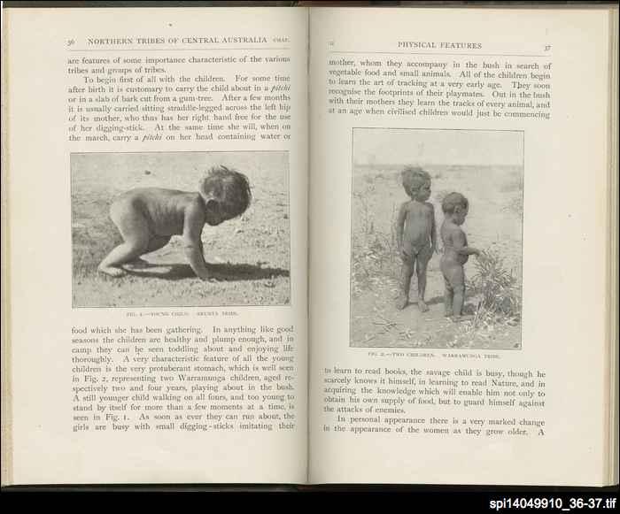 Desert tribes