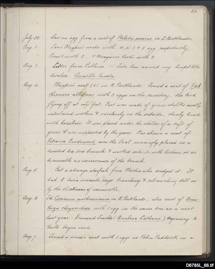 Diary of James Gilbert McDougall