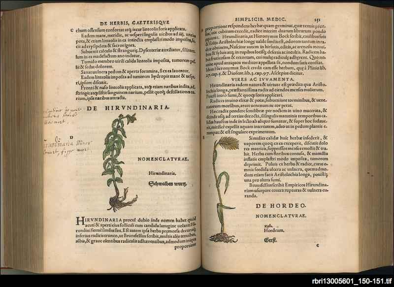 Botanicon: continens herbarvm, aliorvmqve simplicium,