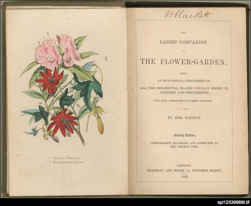 The ladies' companion to the flower-garden
