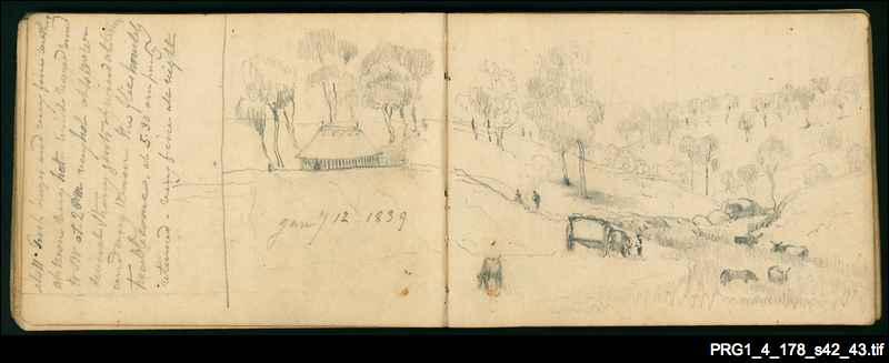 Light's notebooks and sketchbooks